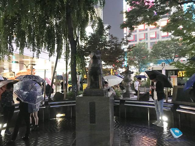 Статья выходного дня. Поездка в Токио