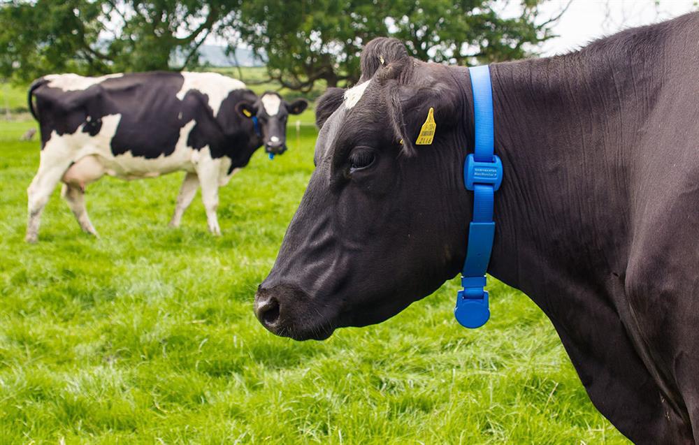 Современные технологии на службе у сельского хозяйства