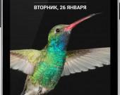 K4_Silver Indigo_01-RUS