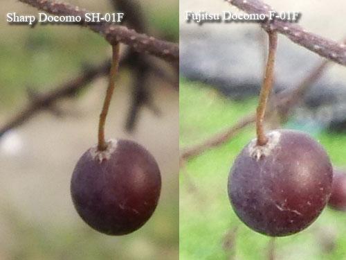 Mobile-review com Обзор Sharp Docomo SH-01F Aquos Phone Zeta